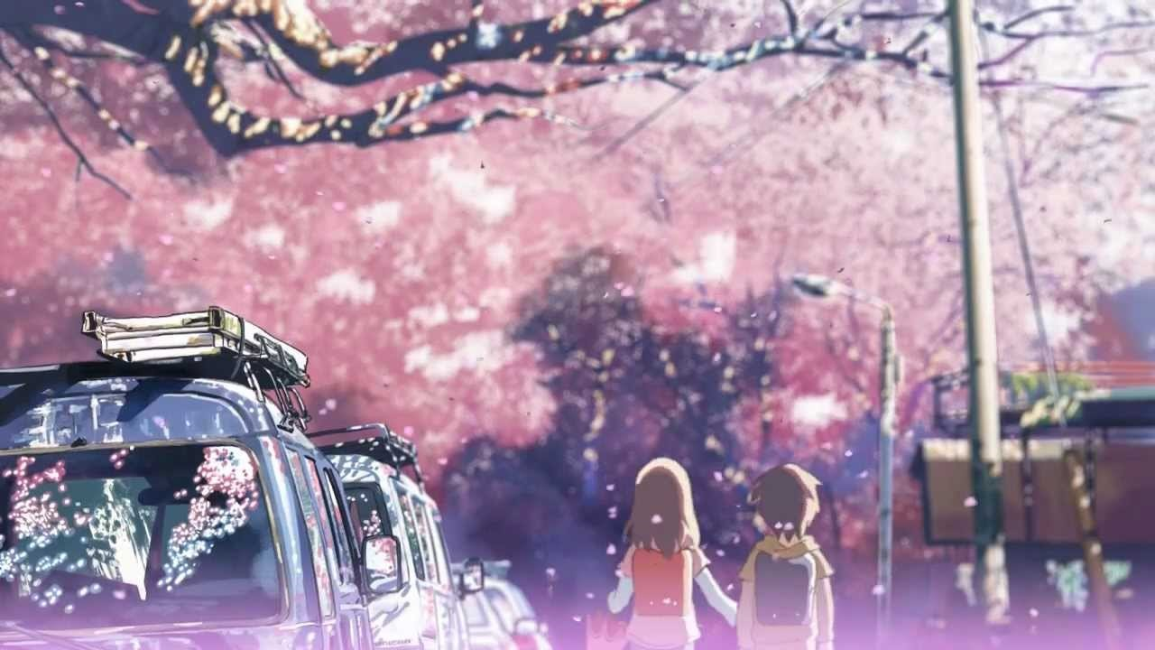 5cm cherry blossoms